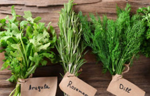 Herbs Cropped Sq
