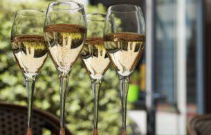Sparkling Wine Flutes