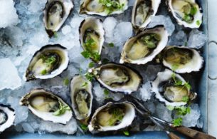 Oysters Raw